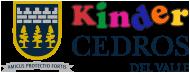 mejores-colegios-privados-df-kinder-Cedros-del-Valle
