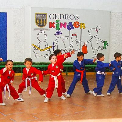 Kinder-privado-en-coyoacan-tae-kown-do-Cedros-movil