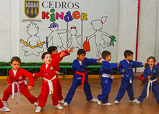 Kinder-privado-en-coyoacan-tae-kwan-do-Cedros